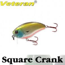 SQUARE CRANK / 스퀘어 크랭크