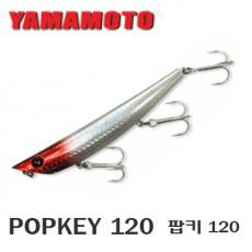 Popkey 120 / 팝키 120